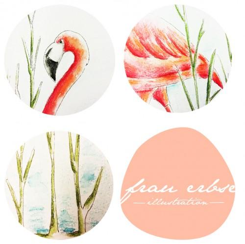 Flamingo_Ausschnitte