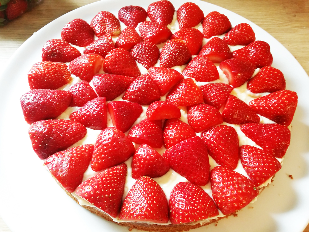 Erdbeerkuchen_Teig Pudding Erdbeeren
