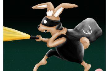 Portfolio Einbrecher Hase